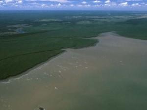 Estuaire du Sinnamary - Les ailes hydro de Montsinéry