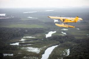 Survol des savanes avec les ailes hydro de Montsinéry